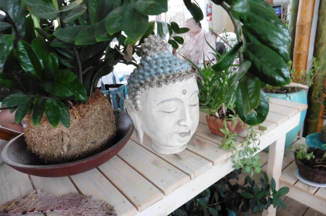green space with buddha,  good luck. good karma. compare with photo showing Friends of the Lake Worth  Pool