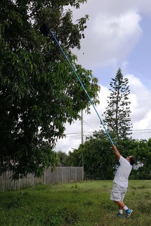 Longest pole in Lake Worth wielded by Brian Kirsh